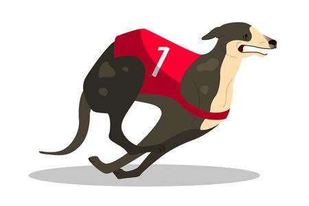 Single greyhound racing