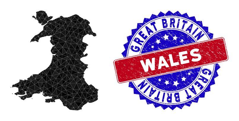 Welsh map & badge